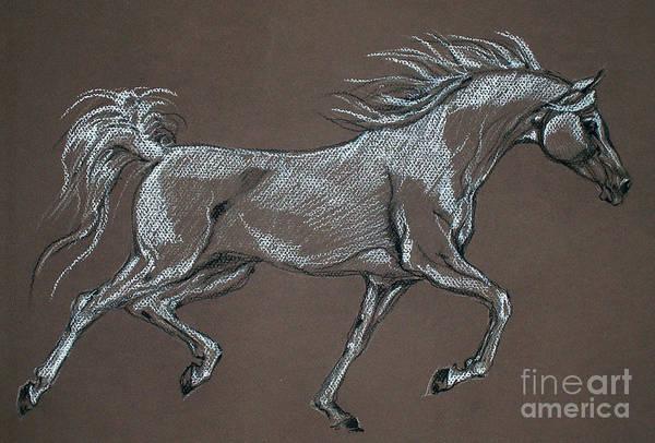 Horse Poster featuring the pastel Arabian Horse by Angel Tarantella
