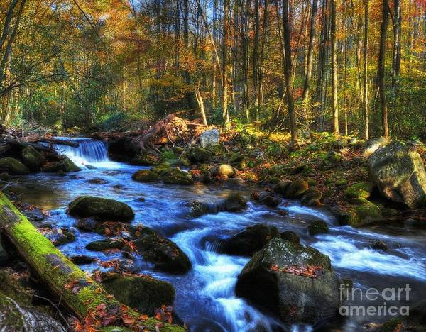 Smoky Mountains Poster featuring the photograph A Smoky Mountain Autumn by Mel Steinhauer