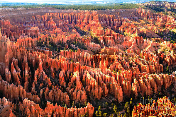 Bryce Canyon Poster featuring the photograph Afternoon Hoodoos by Robert Bales