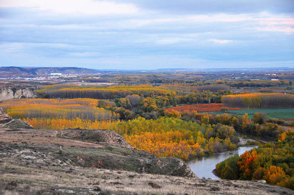 Color Poster featuring the photograph Autumn Colors On The Ebro River by RicardMN Photography