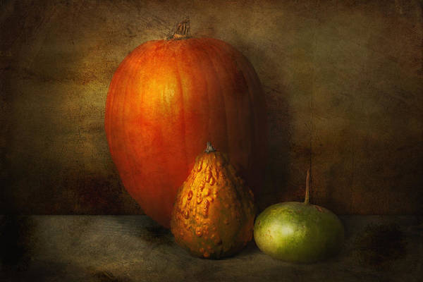 Pumpkin Poster featuring the photograph Autumn - Gourd - Melon Family by Mike Savad