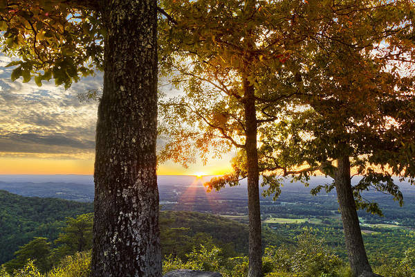 Appalachia Poster featuring the photograph Autumn Highlights by Debra and Dave Vanderlaan