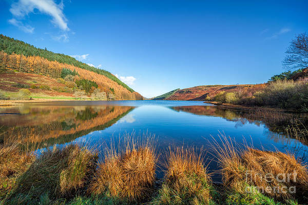 Betws Y Coed Poster featuring the photograph Autumn Lake by Adrian Evans