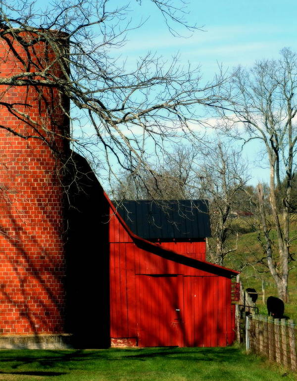 Barns Poster featuring the photograph Barn Shadows by Karen Wiles