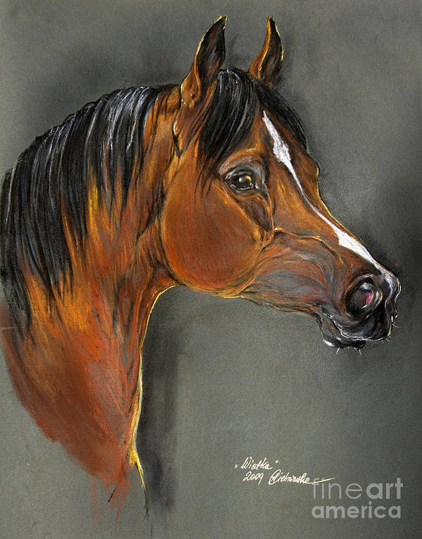 Horse Poster featuring the pastel Bay Horse Portrait by Angel Tarantella