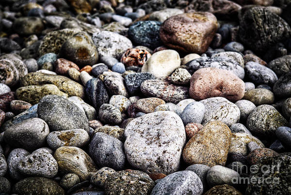 Rock Poster featuring the photograph Beach Pebbles by Elena Elisseeva