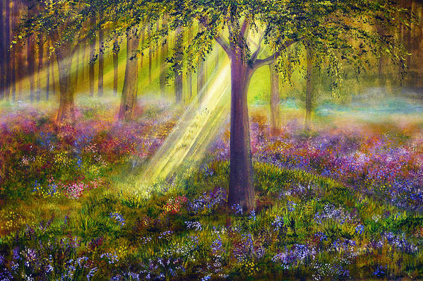 Bluebell Woods Poster by Ann Marie Bone
