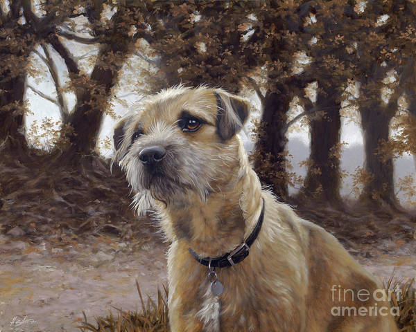 Dog Paintings Poster featuring the painting Border Terrier In The Woods by John Silver