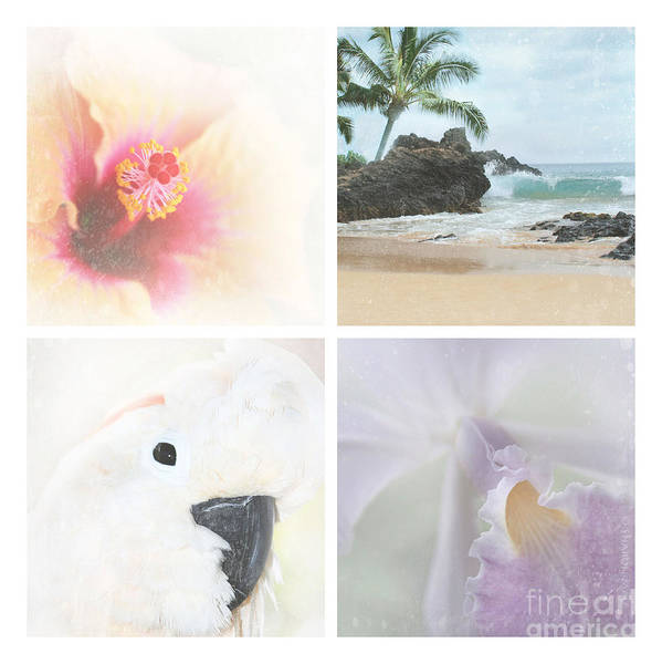 Aloha Poster featuring the photograph Breathe . Feel The Wind . . . by Sharon Mau