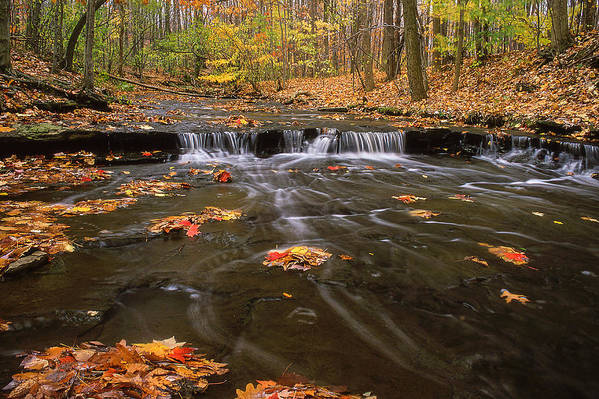 Buttermilk Falls Poster featuring the photograph Buttermilk Falls by Dale Kincaid
