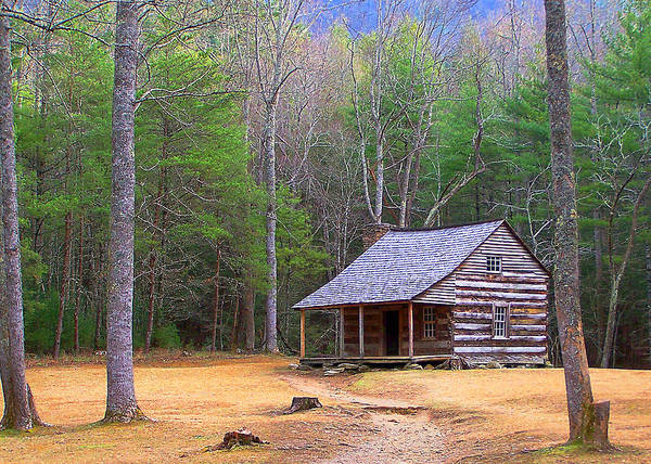 America Poster featuring the photograph Carter Shield's Cabin II by Jim Finch
