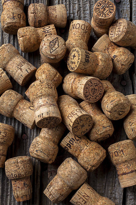 Champagne Poster featuring the photograph Champagne Corks by Garry Gay