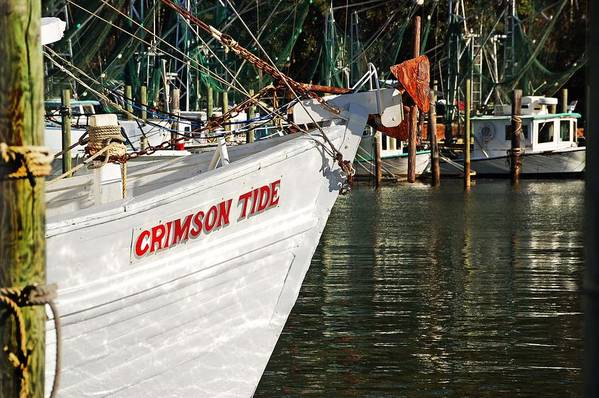 Alabama Poster featuring the digital art Crimson Tide Bow by Michael Thomas