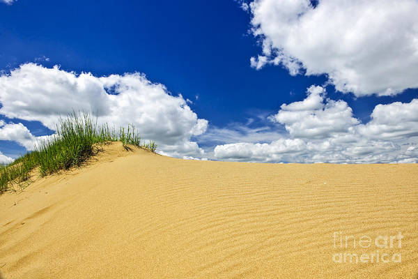 Sand Poster featuring the photograph Desert Landscape In Manitoba by Elena Elisseeva