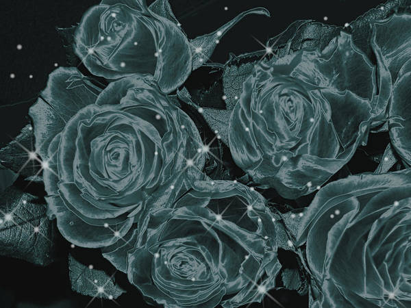 Art166 Poster featuring the digital art Floral Constellations by Wendy J St Christopher