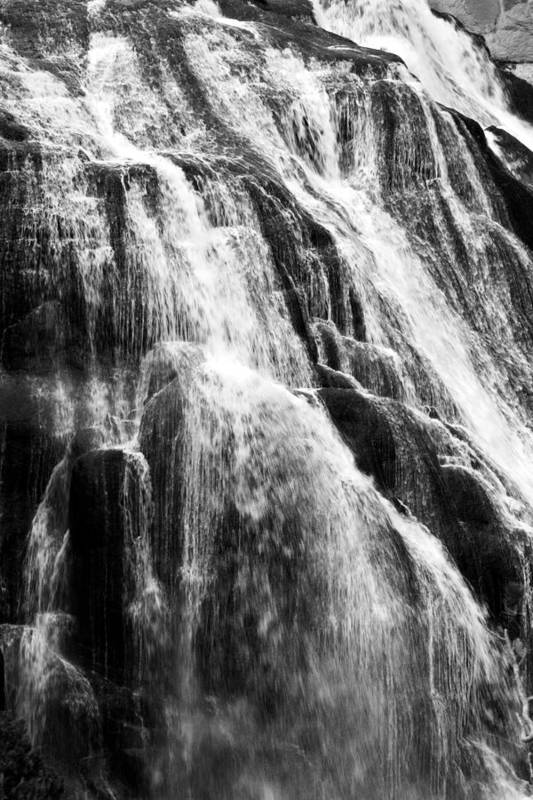 Gibbon Falls Poster featuring the photograph Gibbon Falls by Bill Gallagher