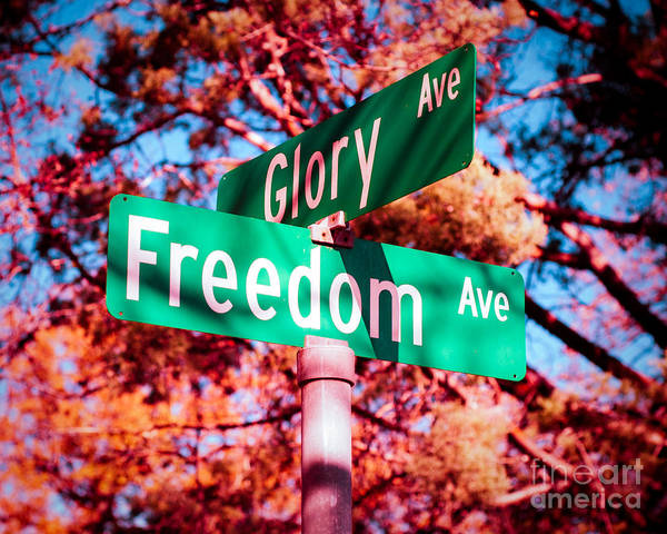 Glory Poster featuring the photograph Glory Signs by Sonja Quintero