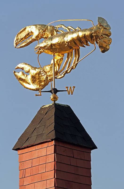 Boston Poster featuring the photograph Golden Lobster Weathervane by Juergen Roth