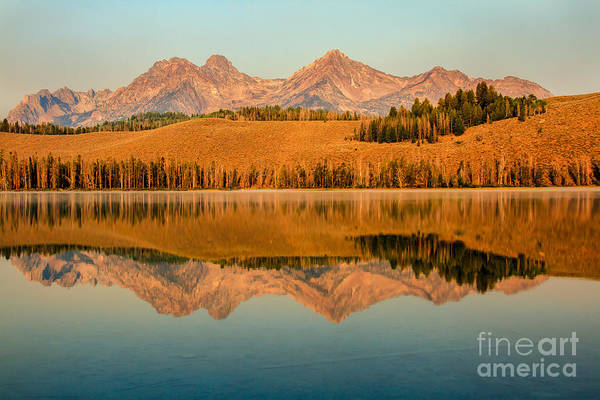 Rocky Mountains Poster featuring the photograph Golden Mountains Reflection by Robert Bales