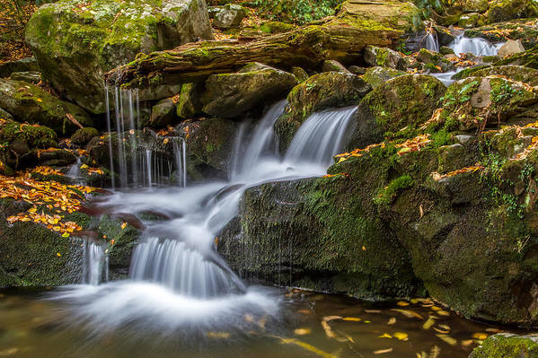 Tennessee Poster featuring the photograph Grotto Falls Great Smoky Mountains Tennessee by Pierre Leclerc Photography