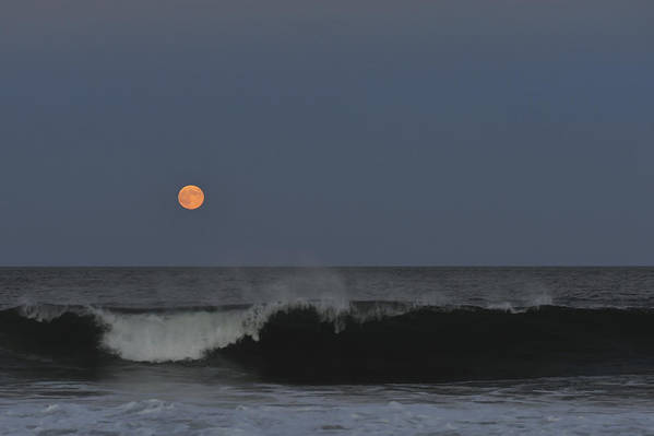 Harvest Moon Poster featuring the photograph Harvest Moon Seaside Park Nj by Terry DeLuco