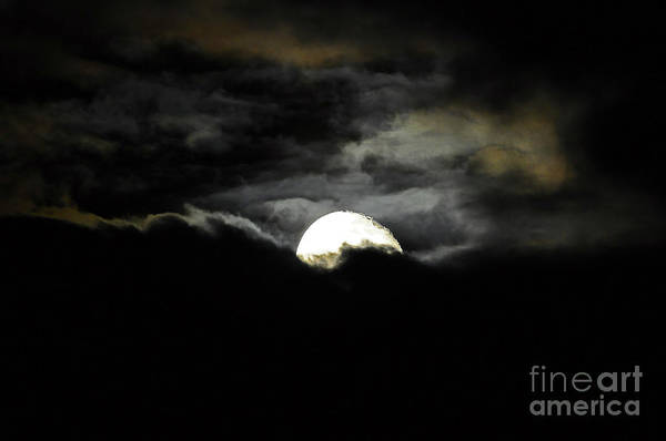 Moon Poster featuring the photograph Haunting Horizon by Al Powell Photography USA
