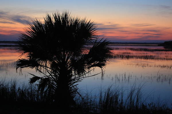 Hunting Island Poster featuring the photograph Hunting Isalnd Tidal Marsh by Michael Weeks