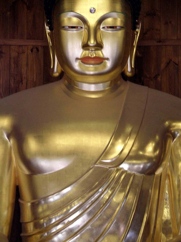 Buddha Poster featuring the photograph Jogyesa Buddha by Jean Hall