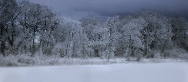 Tree Poster featuring the photograph Late Snow At The Rio Grande by Ellen Heaverlo
