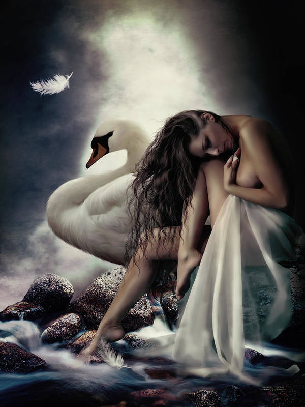 Leda Poster featuring the digital art Leda And The Swan by Shanina Conway