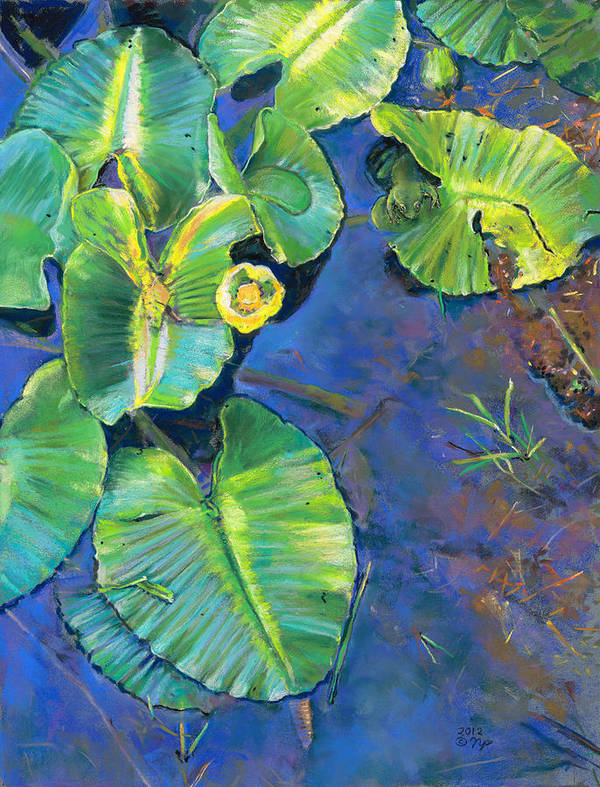 Birdseye Art Studio Poster featuring the painting Lily Pads by Nick Payne