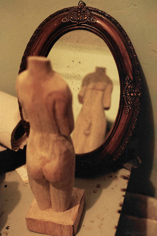 Wood Poster featuring the photograph Man In The Mirror by David Cardona