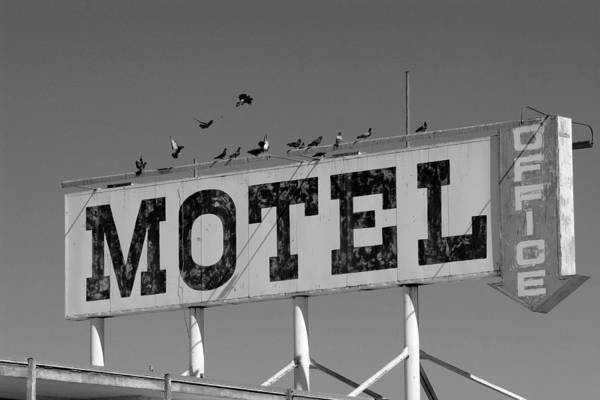 Motel Poster featuring the photograph Motel For The Birds by Peter Tellone
