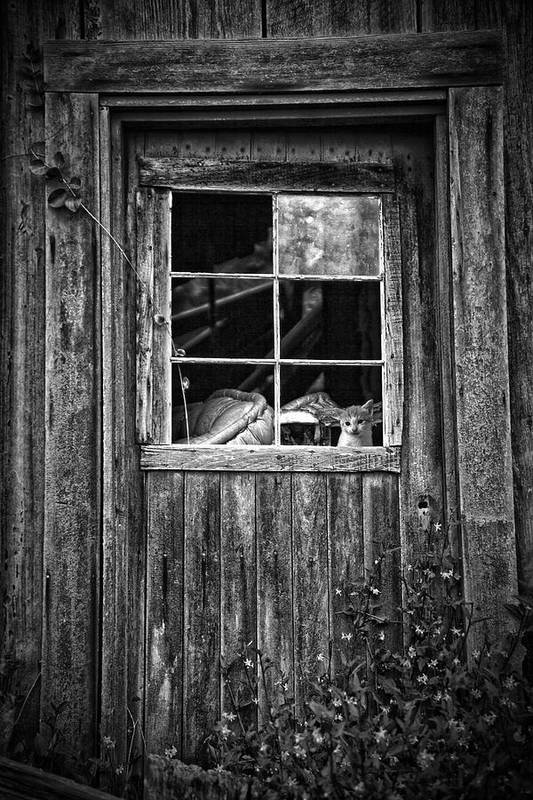 White Poster featuring the photograph Old Window by Garry Gay