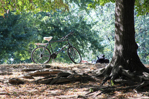 The Bike Sitting On The Hill In Central Park Poster featuring the photograph On The Hill by Mohammed Yusuf