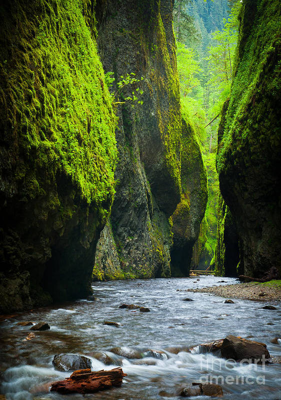 America Poster featuring the photograph Oneonta River Gorge by Inge Johnsson