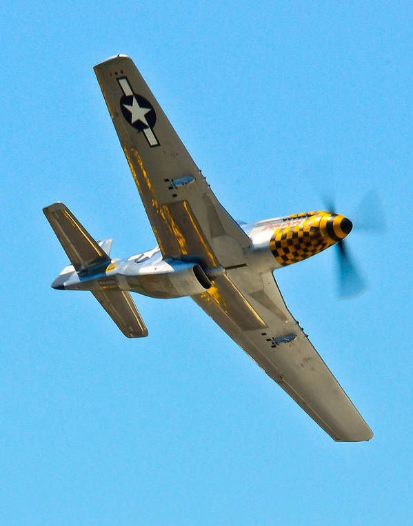 Aviation Poster featuring the photograph P-51 Mustang Wing Over by Puget Exposure