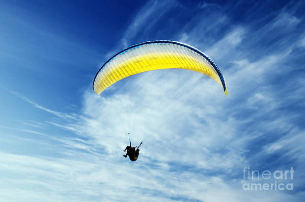 Paragliding Poster featuring the pyrography Paraglider by Jelena Jovanovic