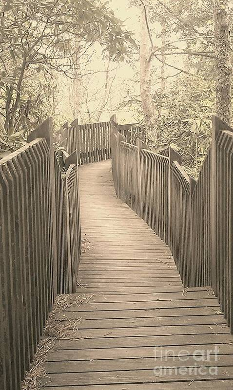 Boardwalk Poster featuring the photograph Pathway by Melissa Petrey
