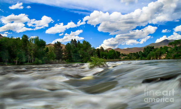 Idaho Poster featuring the photograph Payette River by Robert Bales