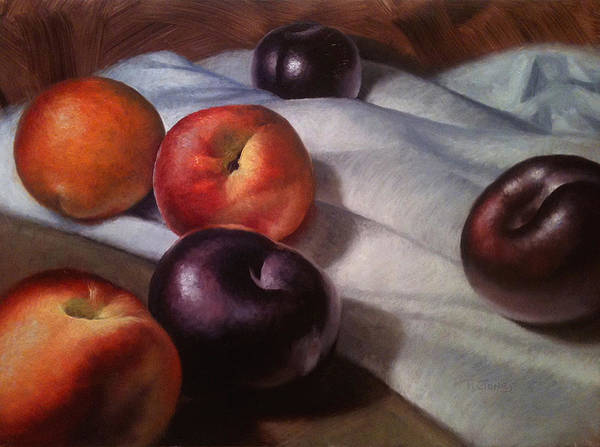 Plum Poster featuring the painting Plums And Nectarines by Timothy Jones