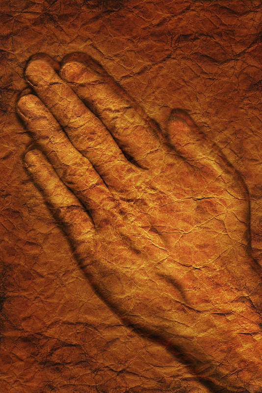 Art Poster featuring the photograph Praying Hands by Don Hammond