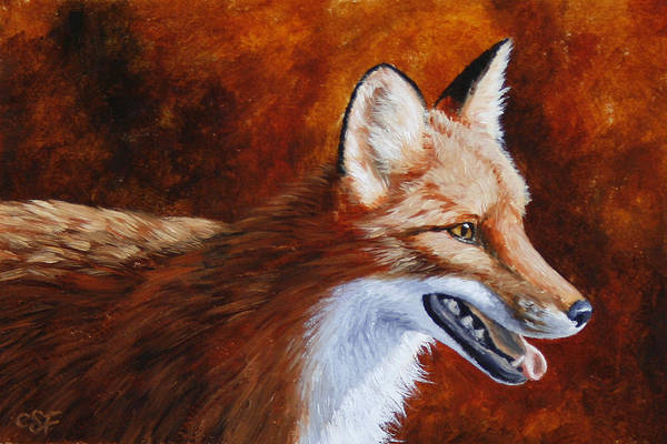 Fox Poster featuring the painting Red Fox - A Warm Day by Crista Forest