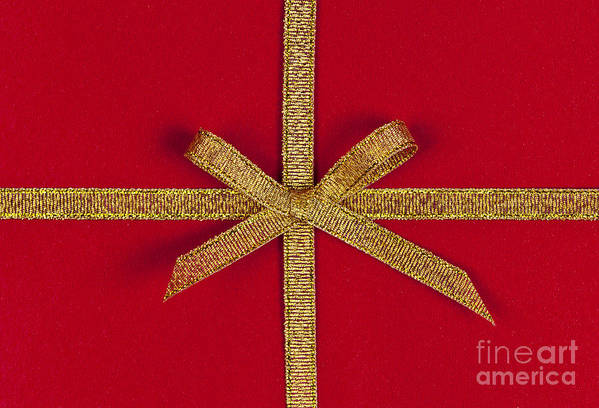 Gift Poster featuring the photograph Red Gift With Gold Ribbon by Elena Elisseeva