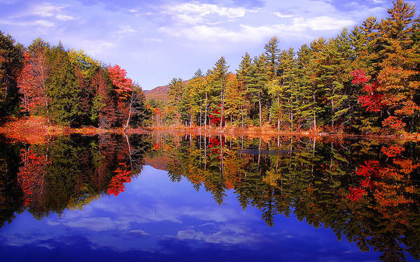 Autumn Roads Poster featuring the photograph Reflected Autumn Lake by William Carroll