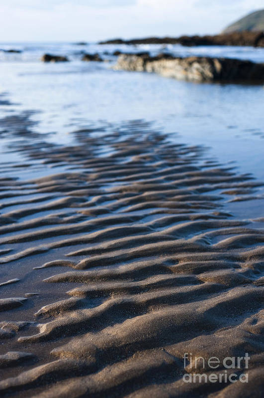 Autumn Poster featuring the photograph Ripples In The Sand by Anne Gilbert