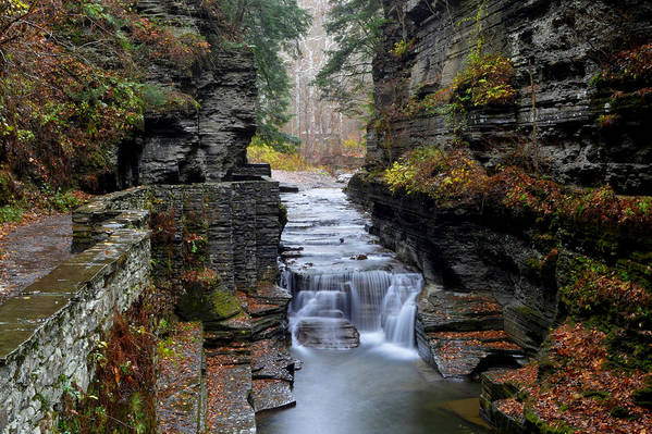 Waterfall Poster featuring the photograph Robert Treman State Park by Frozen in Time Fine Art Photography