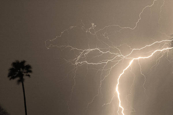 Lightning Poster featuring the photograph Sepia Tropical Thunderstorm Night by James BO Insogna