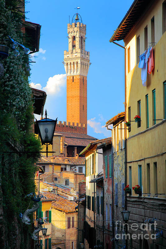 Europe Poster featuring the photograph Siena Streets by Inge Johnsson