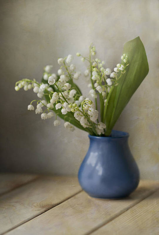 Flowers Poster featuring the photograph Still Life With Fresh Flowers by Jaroslaw Blaminsky